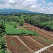 Info Tanah Kaving Malang (23201163) di Kab. Malang