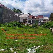 Tanah Kavling Murah Dekat Kampus (23201695) di Kab. Malang