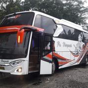 Big Bus Hino R260 Shd 2014