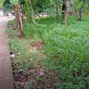 Tanah Cocok Unuk Cluster Di Pabuaran (23241963) di Kota Bekasi