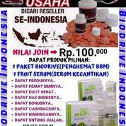 Biodrive Penghemat BBM (23245579) di Kota Cirebon
