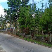 Tanah Strategis Untuk Villa Kemuning, Ngargoyoso, Karanganyar