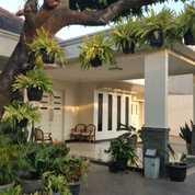 Rumah Mewah Luas 2 Lantai Pinggir Jalan Raya Bintara Dekat Kalimalang (23262603) di Kota Bekasi