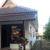 Rumah Adem Ayem Luas Salatiga Kota Nyaman Sejuk (23278059) di Kab. Semarang