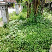 Tanah Datar Strategis Murah Cocok Untuk Usaha Di Baros Kota Sukabumi (23283323) di Kota Sukabumi