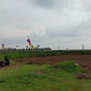 PROMO Tanah Kavling 40 Jutaan Pakis Berkah Sumberpasir View