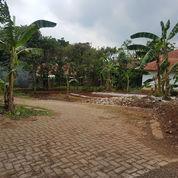 Tanah Kavling Banyumanik Strategis Dekat Transmart (23318263) di Kota Semarang