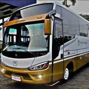 Medium Bus FE84 BC Trijaya Union 29 Seat AC Untuk Bus Wisata, Sekolah, Yayasan Dll