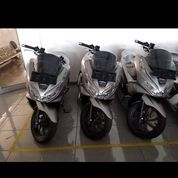Terlaris Honda PCX Dapat Asuransi Jiwa Dan Kecelakaan
