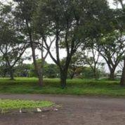 Kavling Murah Taman Ray Citra Raya (23367939) di Kab. Tangerang