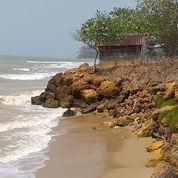 Tanah Di Tepi Laut TUBAN, Jawa Timur Cocok Buat Tambak Udang / Wisata Pantai