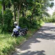 Tanah Murah Poros Jalan Bayan Purworejo SHM (23382631) di Kab. Purworejo