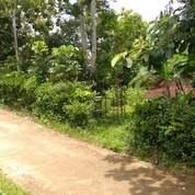 Tanah Idaman Barat Pasar Karangapandan, Karanganyar (23395515) di Kab. Karanganyar