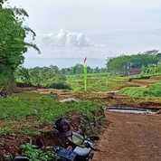 Tanah Kavling Murah Free SHM Legalitas Jelas Dan Aman (23439183) di Kab. Malang