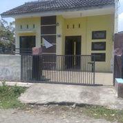 Rumah Sidoarjo Siap Huni (23439915) di Kab. Sidoarjo