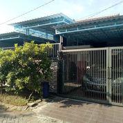 SIAP HUNI Rumah SHM 1lt Perum Jaya Maspion Permata BAGUS, BS NEGO (23456235) di Kab. Sidoarjo