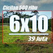 Tanah Kavling Cicilan 500 Ribu, Terjangkau Dan Terhemat