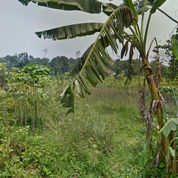 Tanah Strategis Pinggir Jalan Kp. Karat Tajur Halang Bogor (23537595) di Kab. Bogor