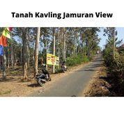 Kavling Jamuran View Di Wagir Malang