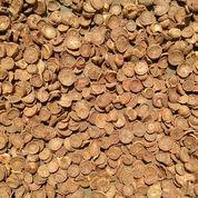 Pinang Iris Super Payakumbuh (23556479) di Kab. Tangerang