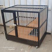 Kandang Kucing Medium No. 2 Brown