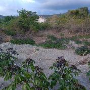 Sebidang Tanah Kosong
