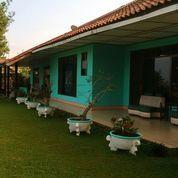 Villa Cantik Di Cisarua, Bogor