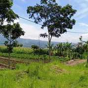 Tanah Kavling Depan Coban Rais Kota Wisata Batu Tanpa Bunga, Sistem Syariah (23617871) di Kota Batu