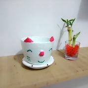 Pot Kaktus Model Kucing Lucu + Tatakan