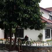 Rumah Hoek Di Bintaro Puri Bintaro Sektor 9 Bintaro Lt 190 M (Lt)