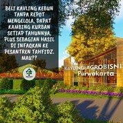Miliki Kavling Agrobisnis Purwakarta Investasi Dunia Akherat (23665279) di Kab. Purwakarta