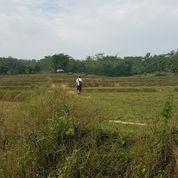 Tanah Darat, Akses Mudah, Milik Pribadi, Bisa Ditawar, Izin Untuk Peternakan Ayam Broiler