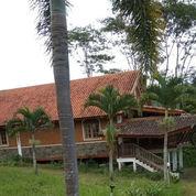 Tanah Murah Strategis Bonus Villa Kayu Sangat Potensial Untuk Pabrik Di Wagir Malang