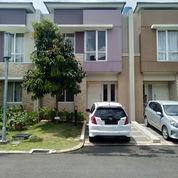 Sudah Renov Rumah Cluster Tesla Summarecon Serpong (23716263) di Kota Tangerang