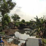 Tanah Di Pulogebang Jaktim (23755287) di Kota Bekasi