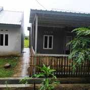 Rumah Kualitas Comercil Angsuran Subsidi (23757851) di Kab. Gowa