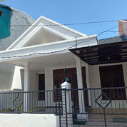 Rumah Murah Di Klampis Semolo Harga Bawah Pasaran (23760099) di Kota Surabaya