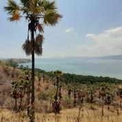 Tanah Di Labuan Bajo Dengan Pemandangan Laut Yang Indah (23780611) di Kab. Manggarai Barat