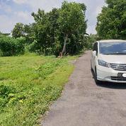 Tanah View Sungai Dan Alam Bagus Bintaran Jl Wonosari Jogja