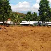 Tanah Kavling Tanpa Bunga Depan Coban Putri Kota Batu Malang (23797007) di Kota Batu