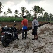 TANAH KAVLING Kawasan Jalur Lingkar Barat KOTA MALANG (23803175) di Kota Malang
