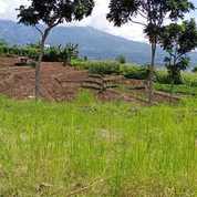 Kavling Tanpa Bunga Dekat Dengan Wisata Batu Malang (23805163) di Kota Batu