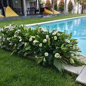 Bunga Rangkai Meja (23819131) di Kota Denpasar