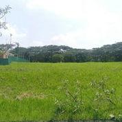 Tanah Kavling Murah Bukit Telaga Golf