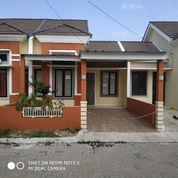 Rumah Murah Siap Huni Panorama Bali Residence Dekat Tangerang, Depok, Bogor (23855779) di Kota Jakarta Barat