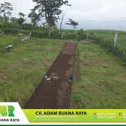 Tanah Siap Bangun Rumah Kost Di Area Kampus UIN 3 Malang.