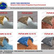 Distributor Pupuk Npk, Urea, Kcl Nonsubsidi (23875295) di Manyar