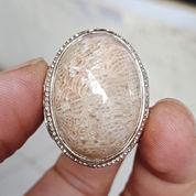 Natural Batu Cincin Lipan Langka (23890443) di Kota Pasuruan