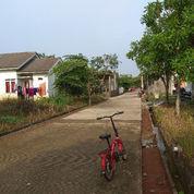 Rumah Cluster Terbesar (23951195) di Kota Bogor