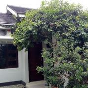 Rumah Siap Huni Dalam Kota Jogja Selatan Alun Alun Jogja (23985319) di Kota Yogyakarta
